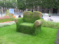 Un fauteuil en herbe