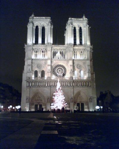 Notre-Dame illuminée par un sapin
